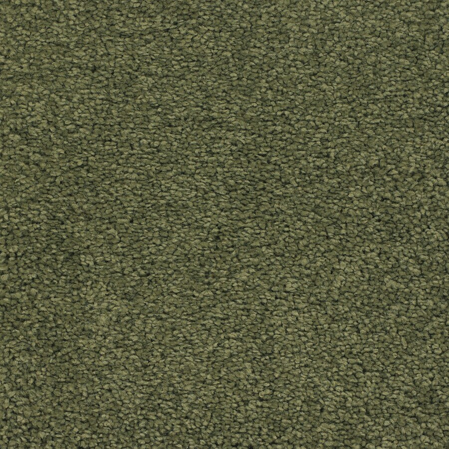 STAINMASTER TruSoft Chimney Rock Green Textured Indoor Carpet
