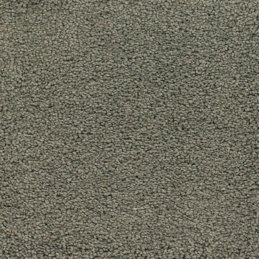 STAINMASTER TruSoft Chimney Rock Brown/Tan Textured Interior Carpet