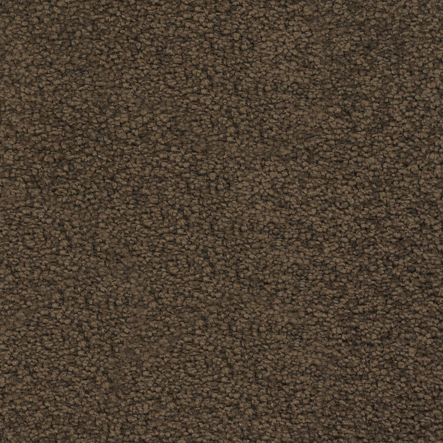STAINMASTER TruSoft Chimney Rock 12-ft W Brown/Tan Textured Interior Carpet