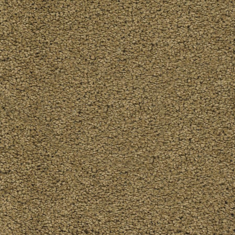 STAINMASTER TruSoft Chimney Rock Brown/Tan Textured Interior Carpet