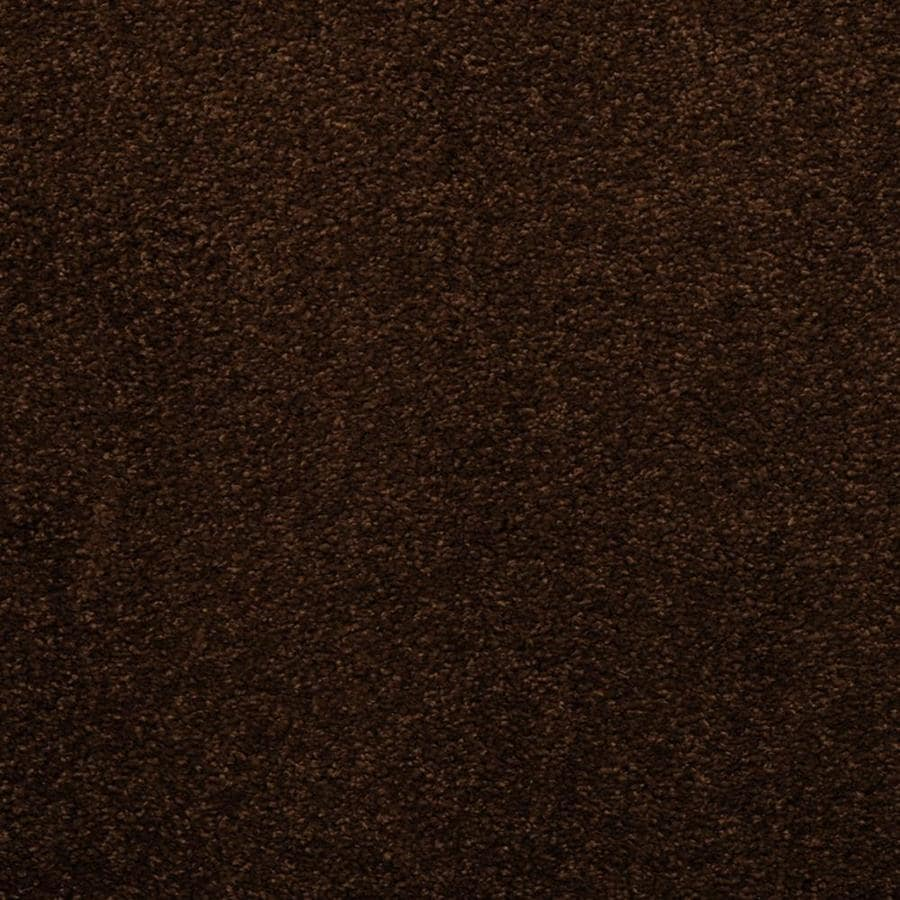 STAINMASTER TruSoft Luminosity Brown/Tan Textured Interior Carpet