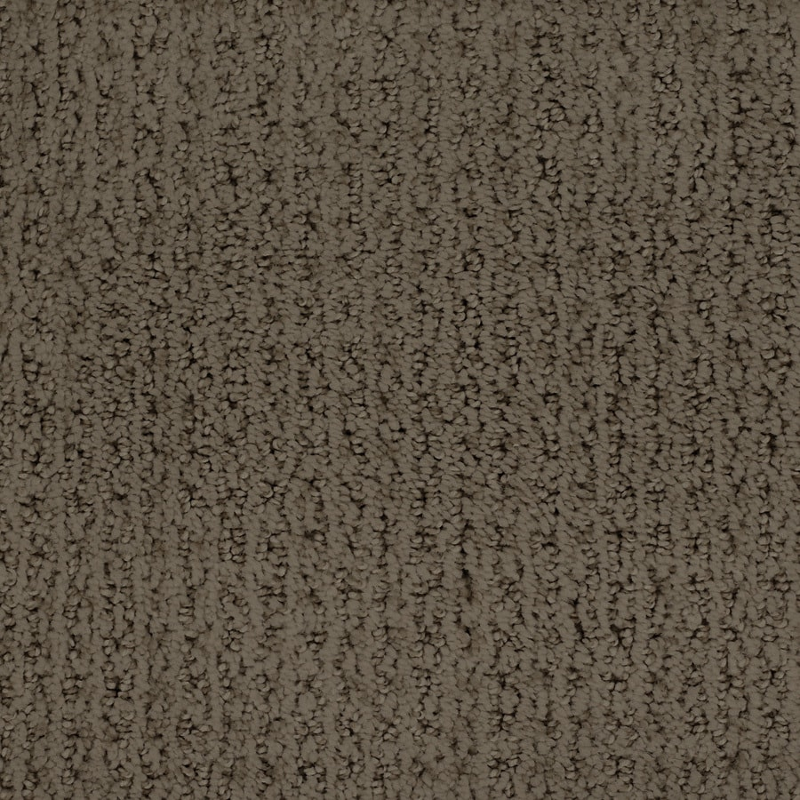 STAINMASTER TruSoft Salena Brown/Tan Cut and Loop Indoor Carpet