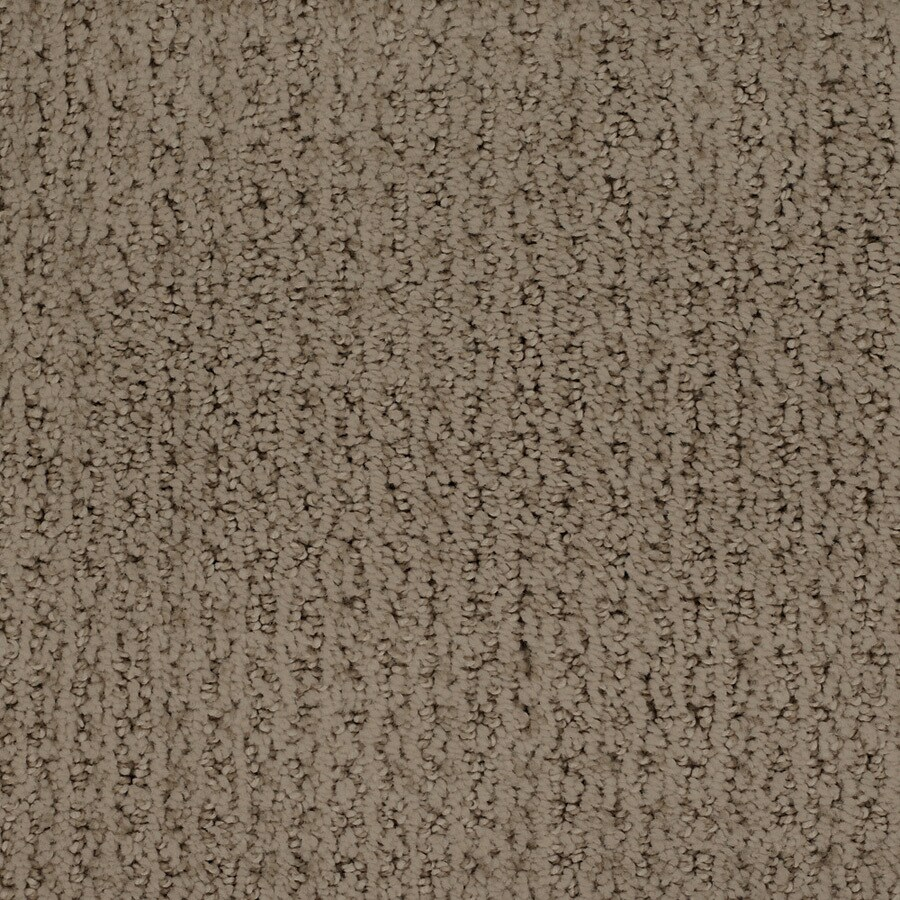 STAINMASTER TruSoft Salena Brown/Tan Interior Carpet