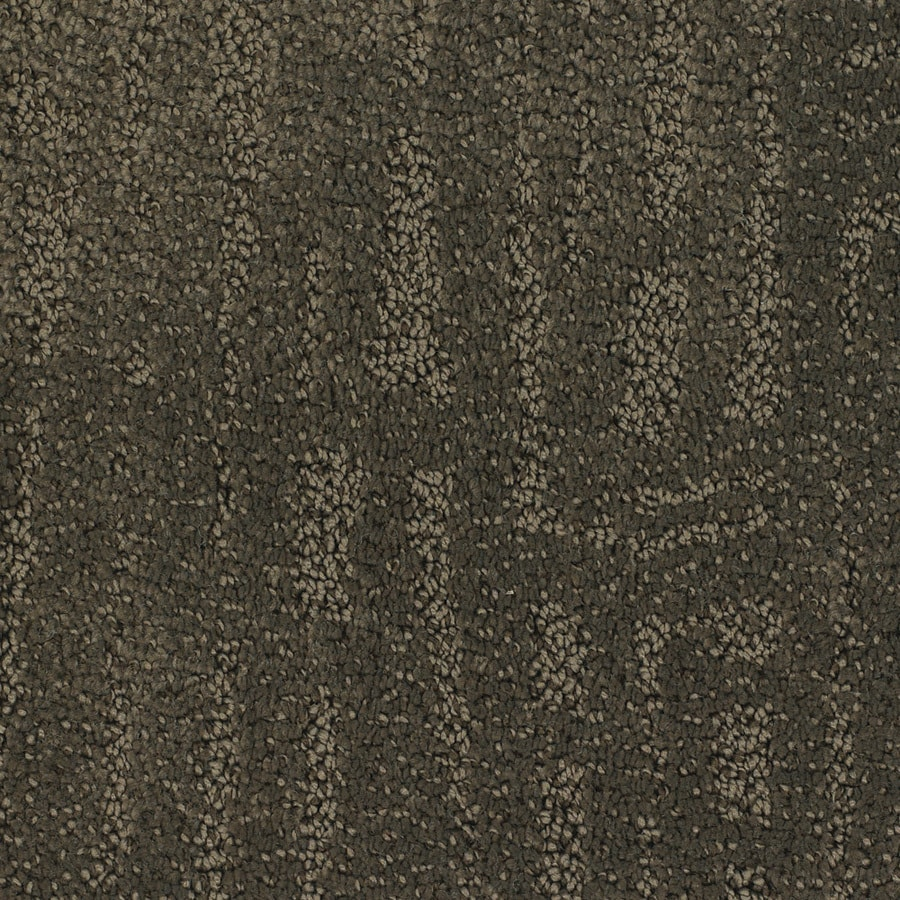 STAINMASTER TruSoft Regatta Brown/Tan Cut and Loop Indoor Carpet