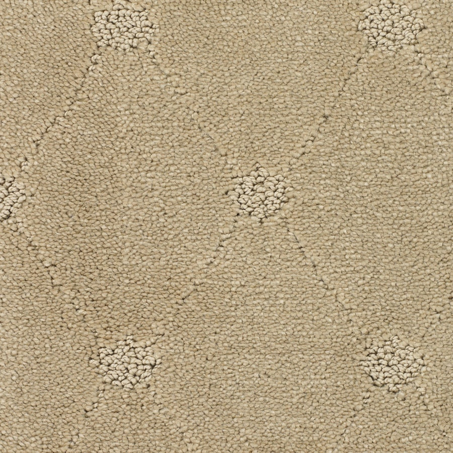 STAINMASTER Trusoft Columbia Valley Cream/Beige/Almond Interior Carpet