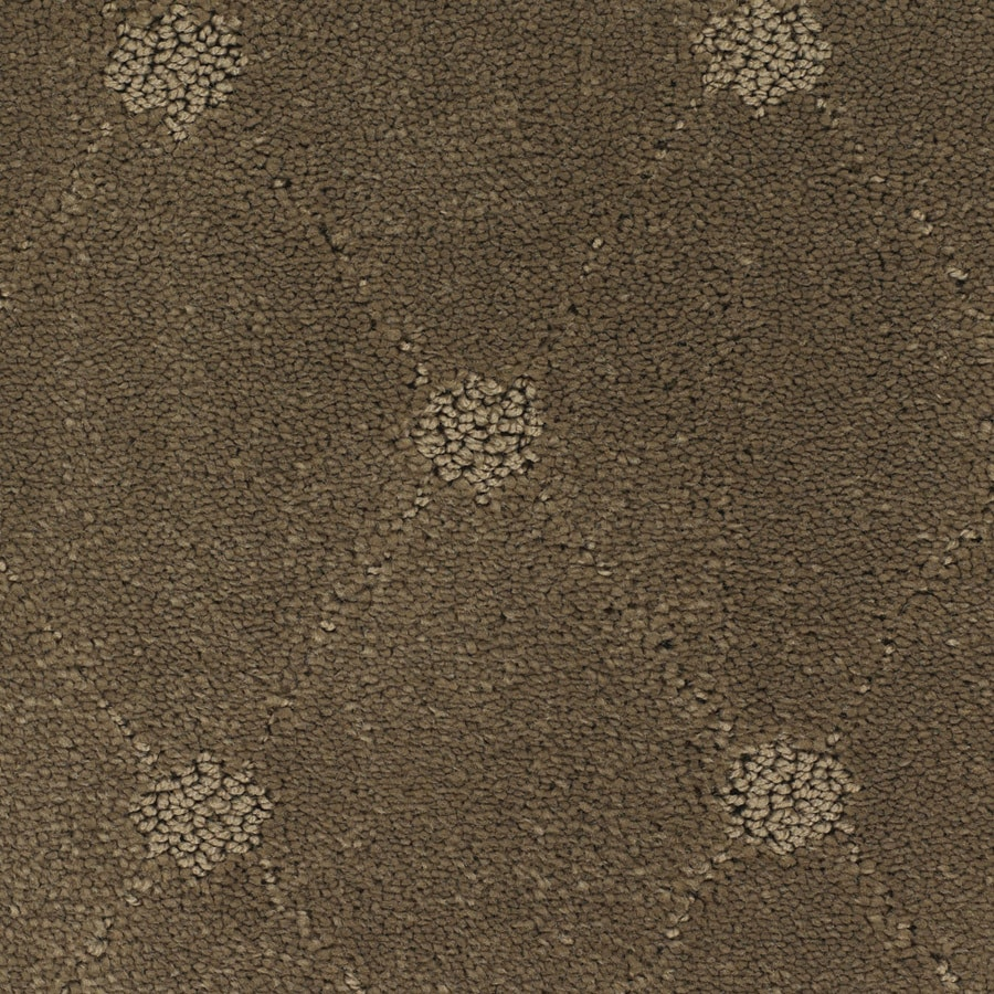 STAINMASTER TruSoft Columbia Valley Brown/Tan Cut and Loop Indoor Carpet