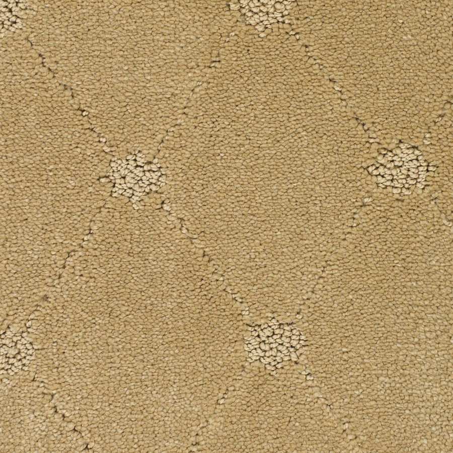 STAINMASTER Trusoft Columbia Valley Yellow/Gold Interior Carpet