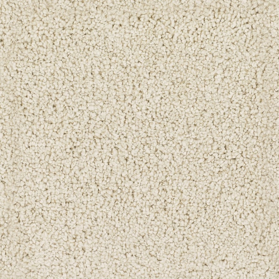 Shop Stainmaster Trusoft Pomadour 12 Ft Textured Interior