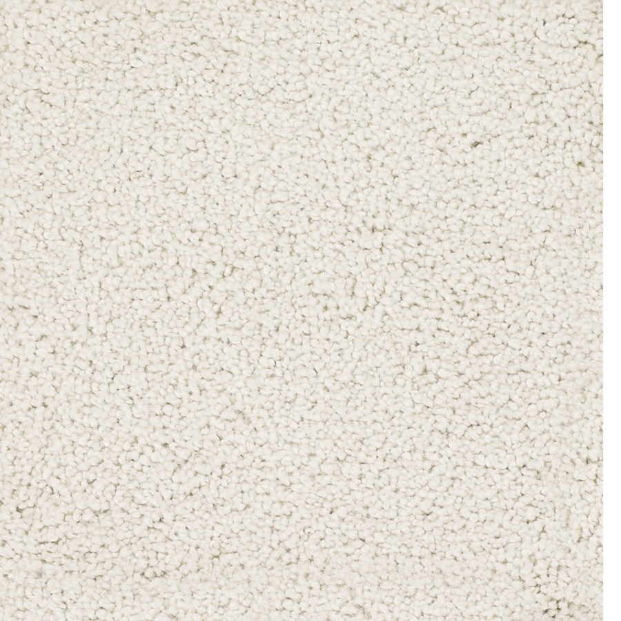 Dixie Group TruSoft Pomadour Cream/Beige/Almond Textured Indoor Carpet
