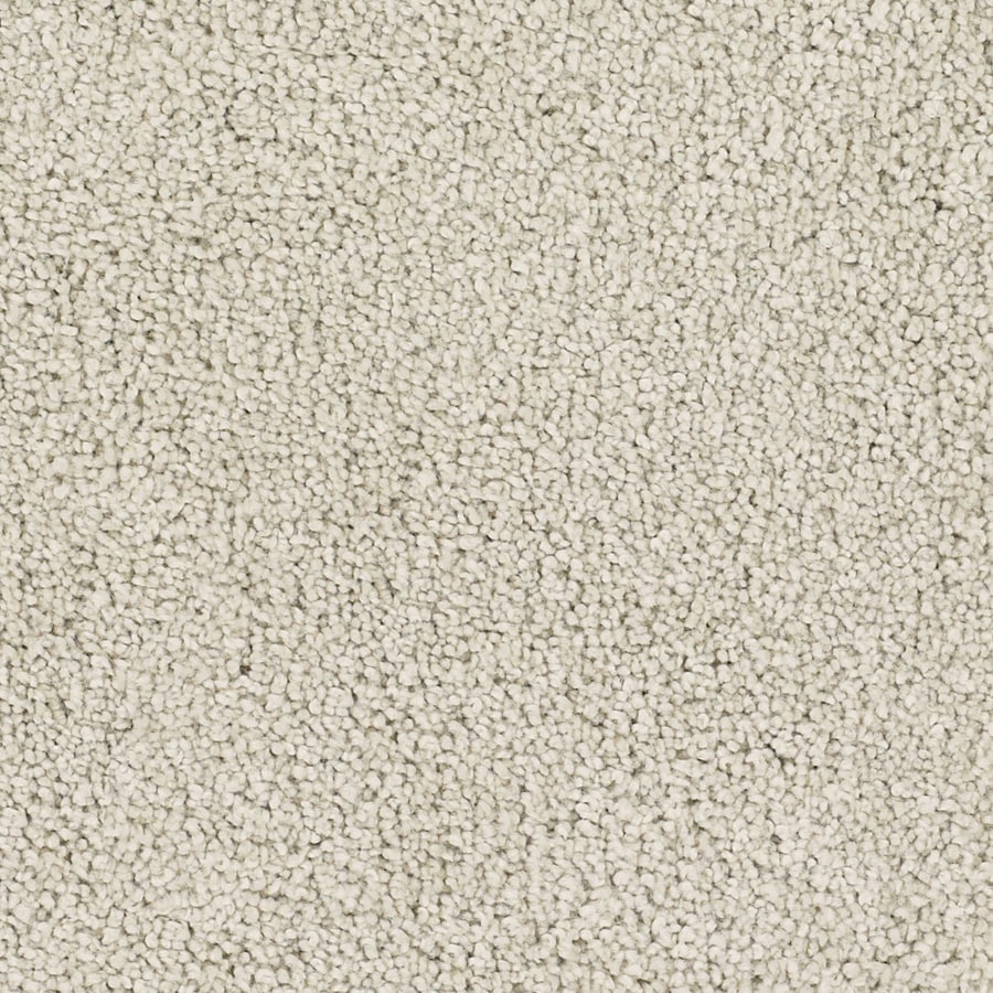 Dixie Group TruSoft Pomadour 12-ft W x Cut-to-Length Cream/Beige/Almond Textured Interior Carpet
