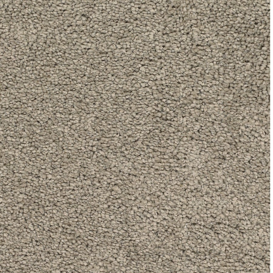 Dixie Group TruSoft Pomadour 12-ft W Brown/Tan Textured Interior Carpet