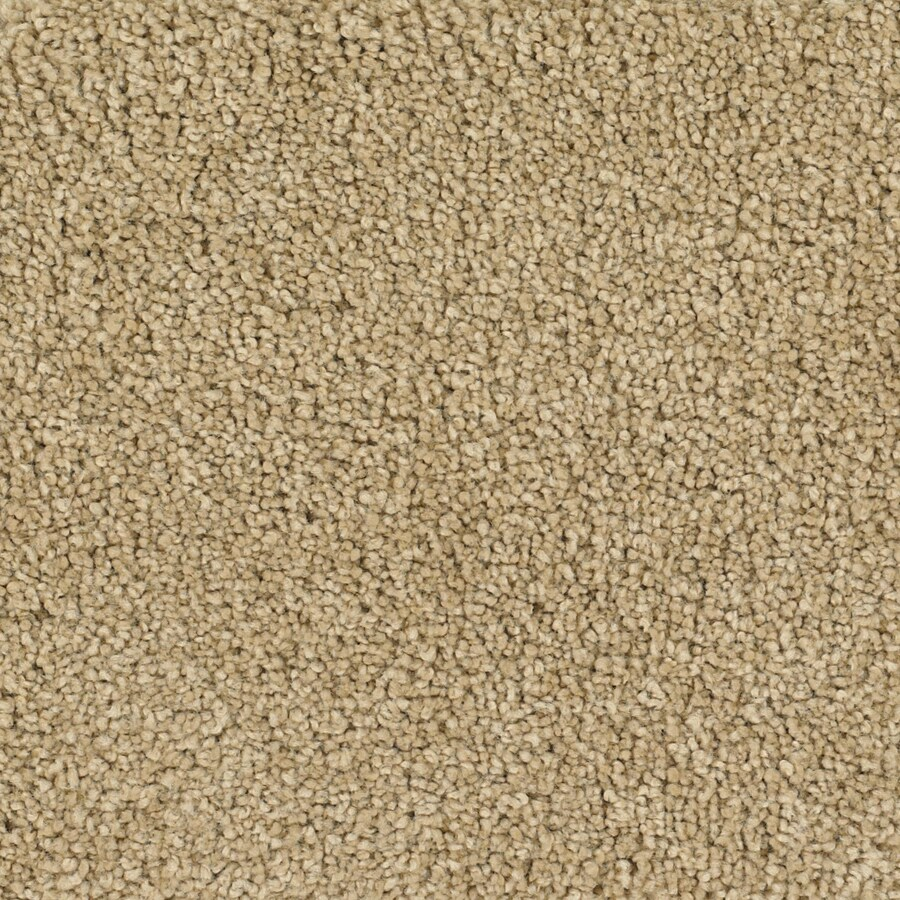 Dixie Group TruSoft Pomadour 12-ft W x Cut-to-Length Yellow/Gold Textured Interior Carpet