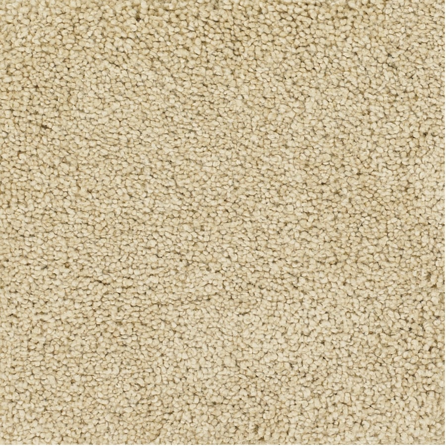 Dixie Group TruSoft Pomadour Yellow/Gold Textured Interior Carpet
