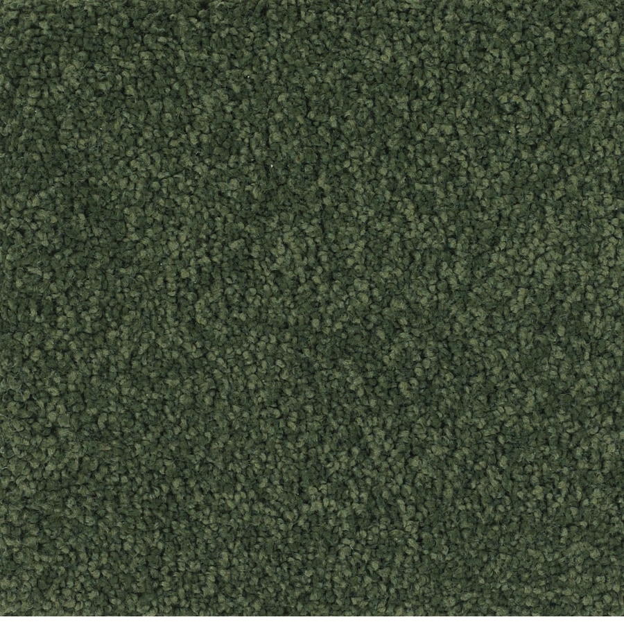 Dixie Group TruSoft Pomadour 12-ft W x Cut-to-Length Green Textured Interior Carpet