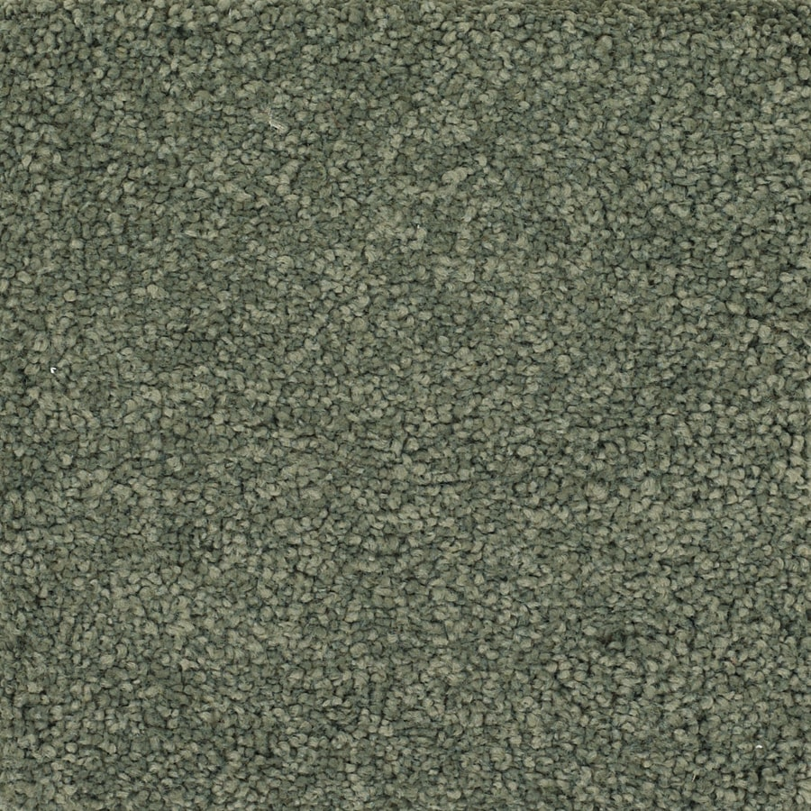 Dixie Group TruSoft Pomadour Green Textured Interior Carpet