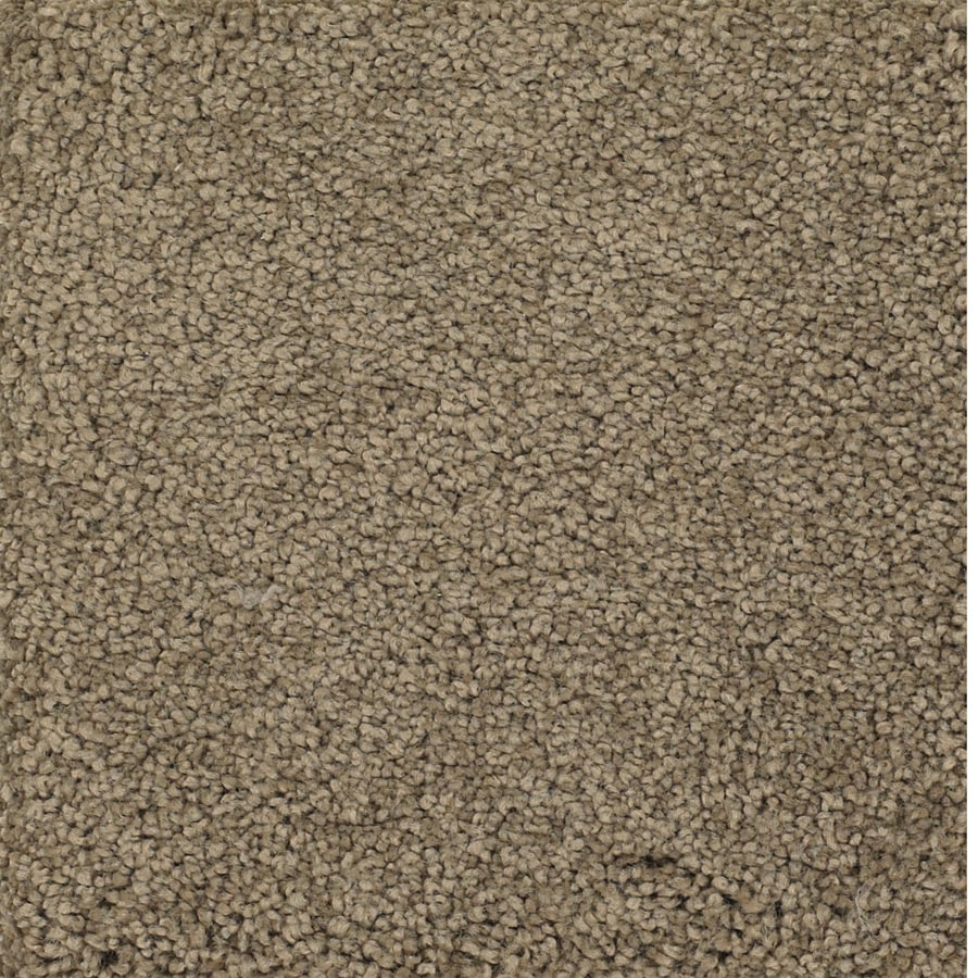Dixie Group Trusoft Pomadour Brown/Tan Textured Interior Carpet