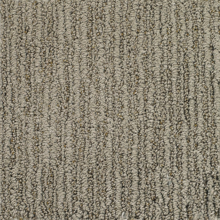 Dixie Group Trusoft Sequoia Grove Brown Fashion Forward Indoor Carpet