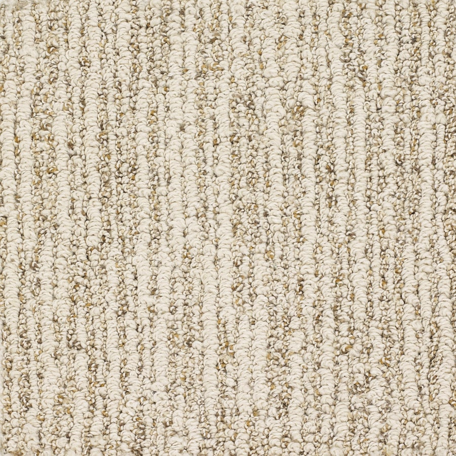 Dixie Group Trusoft Sequoia Grove Cream Fashion Forward Indoor Carpet