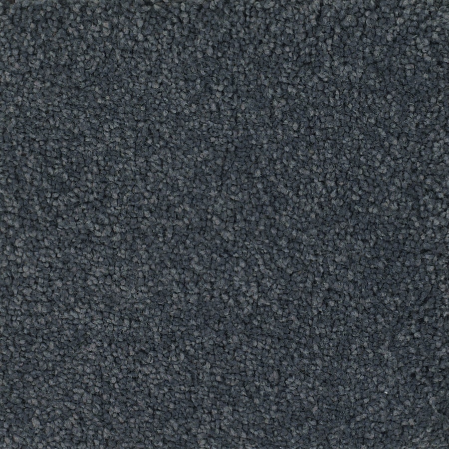 Dixie Group Trusoft Pomadour Gray/Silver Textured Interior Carpet