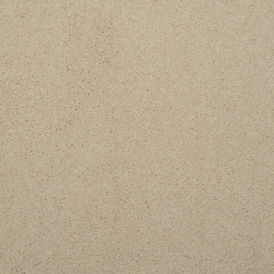 Dixie Group TruSoft Levity - Feature Buy Brown/Tan Textured Indoor Carpet