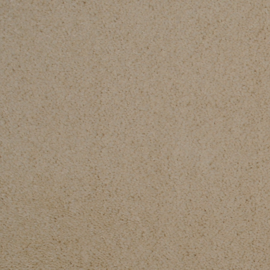 Dixie Group TruSoft Vellore 12-ft W Sand Castle Textured Interior Carpet