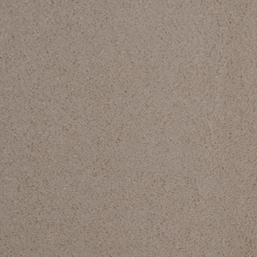 Dixie Group TruSoft Vellore Tango Textured Indoor Carpet
