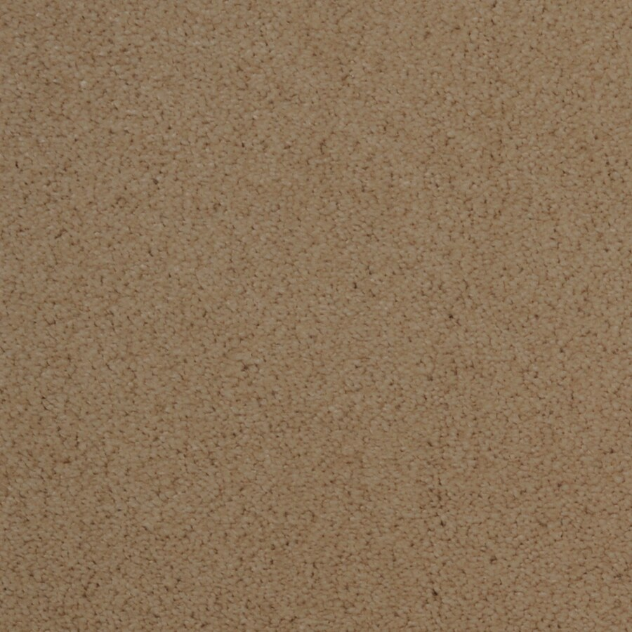 Dixie Group TruSoft Vellore Shoreline Textured Indoor Carpet
