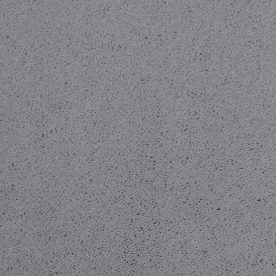 Dixie Group Trusoft Vellore Bordeaux Textured Interior Carpet