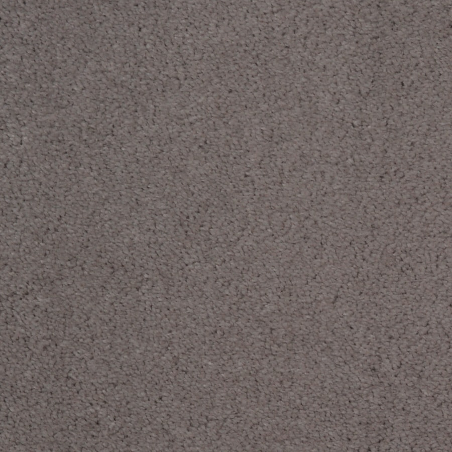 Dixie Group TruSoft Vellore 12-ft W x Cut-to-Length Cavern Textured Interior Carpet