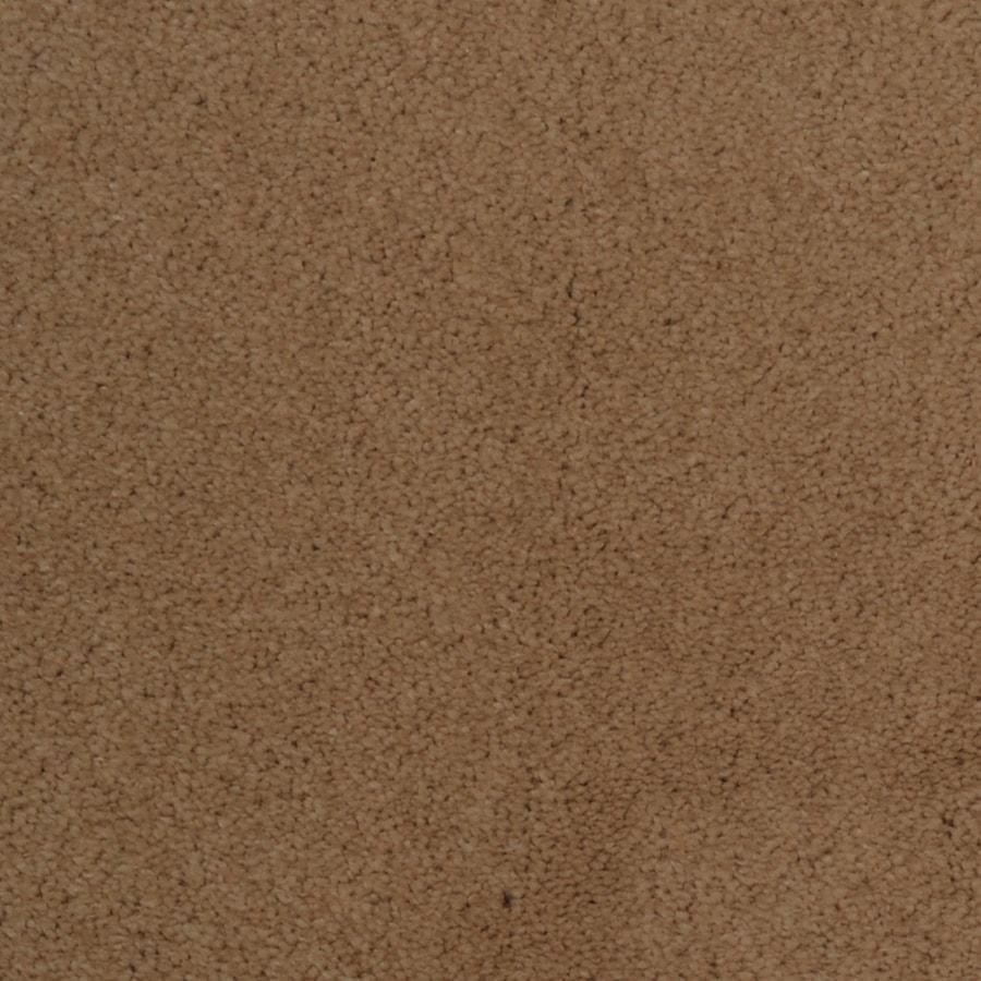 Dixie Group TruSoft Vellore Opline Textured Indoor Carpet