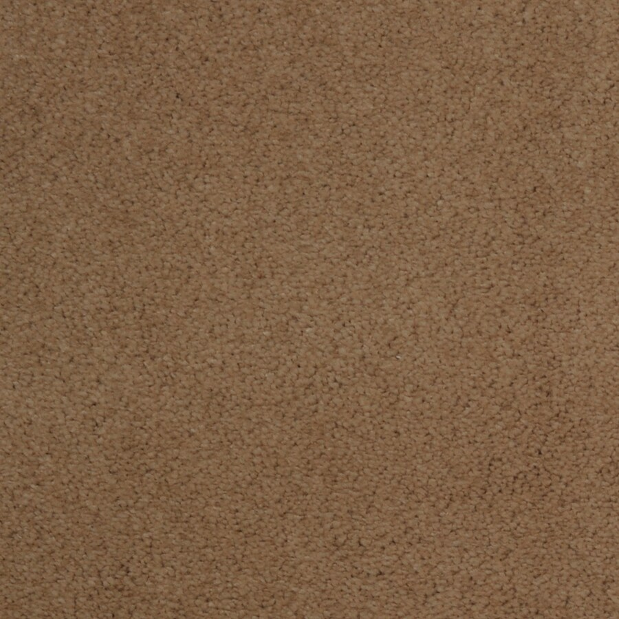 Dixie Group TruSoft Vellore 12-ft W x Cut-to-Length String Textured Interior Carpet