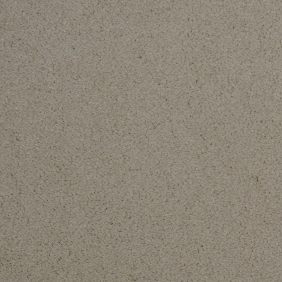 Dixie Group TruSoft Vellore 12-ft W Lattice Textured Interior Carpet