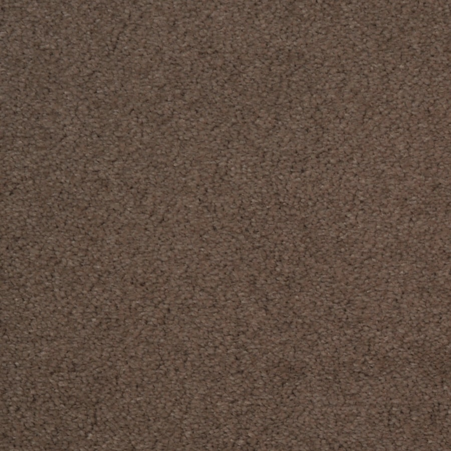 Dixie Group TruSoft Vellore Wisper Textured Interior Carpet
