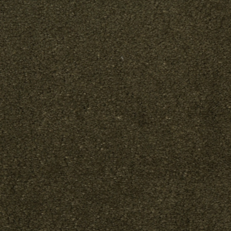 Dixie Group TruSoft Vellore 12-ft W x Cut-to-Length Starlight Textured Interior Carpet