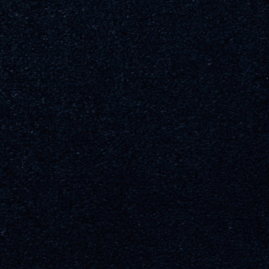 Dixie Group TruSoft Vellore 12-ft W x Cut-to-Length Foxglove Textured Interior Carpet