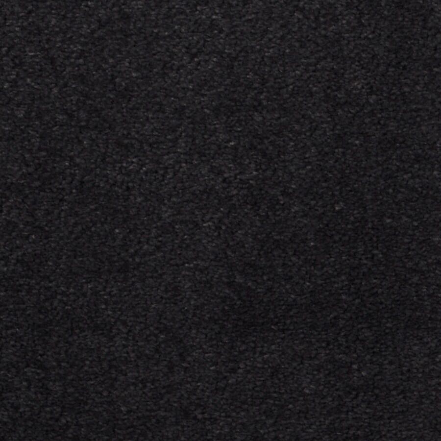 Dixie Group TruSoft Vellore 12-ft W x Cut-to-Length Newport Textured Interior Carpet