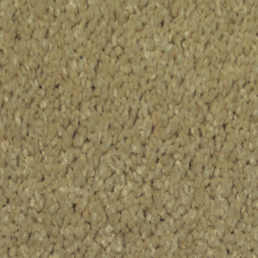 Dixie Group TruSoft Larissa 12-ft W x Cut-to-Length Shutter Textured Interior Carpet