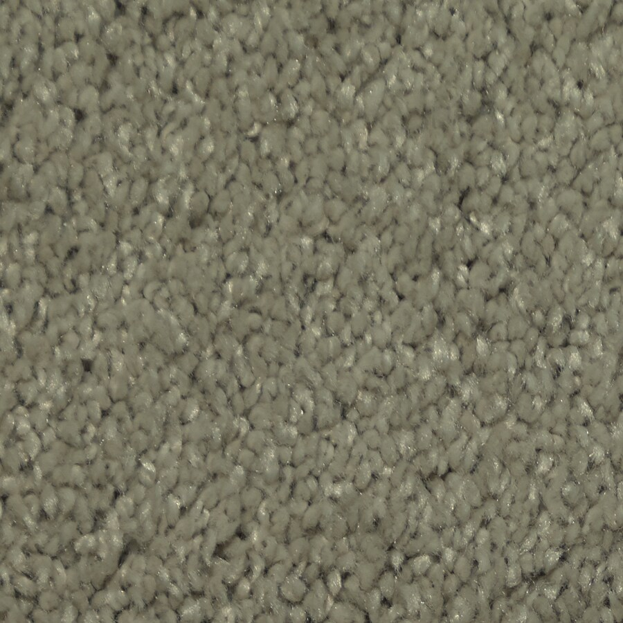 Dixie Group TruSoft Larissa Electric Textured Indoor Carpet