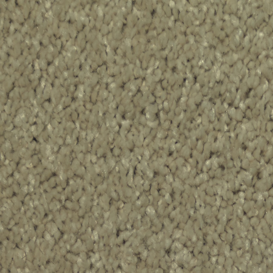 Dixie Group TruSoft Larissa Swirl Textured Indoor Carpet
