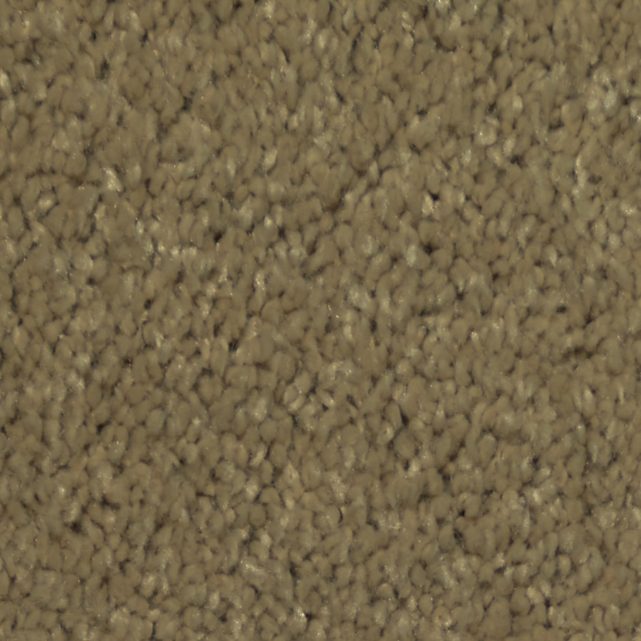 Dixie Group Trusoft Larissa Cadet Textured Interior Carpet