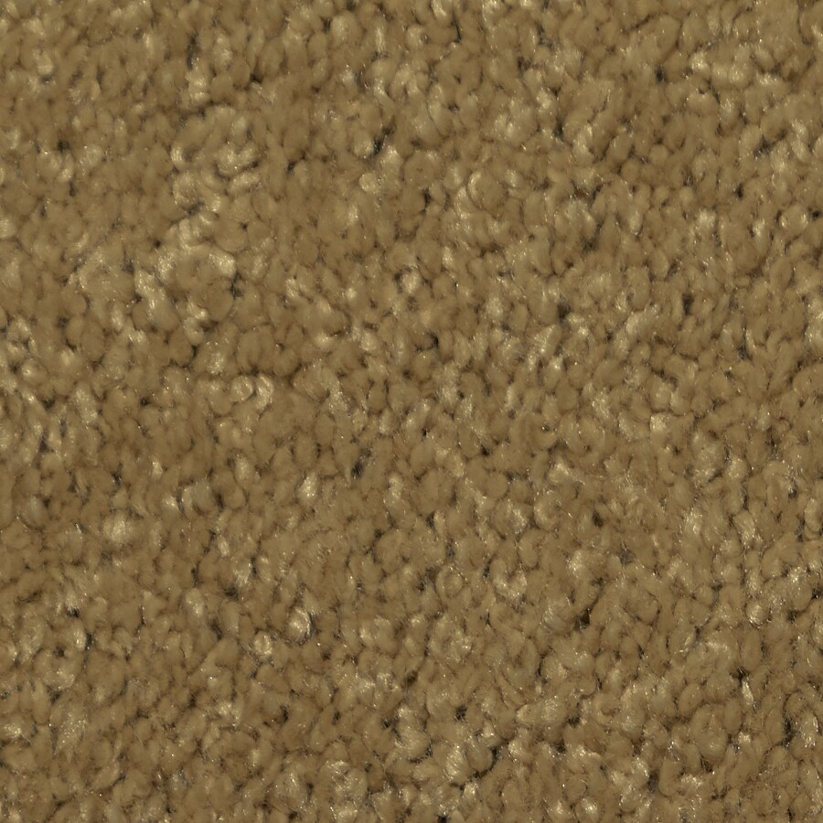 Dixie Group TruSoft Larissa Elegant Textured Interior Carpet