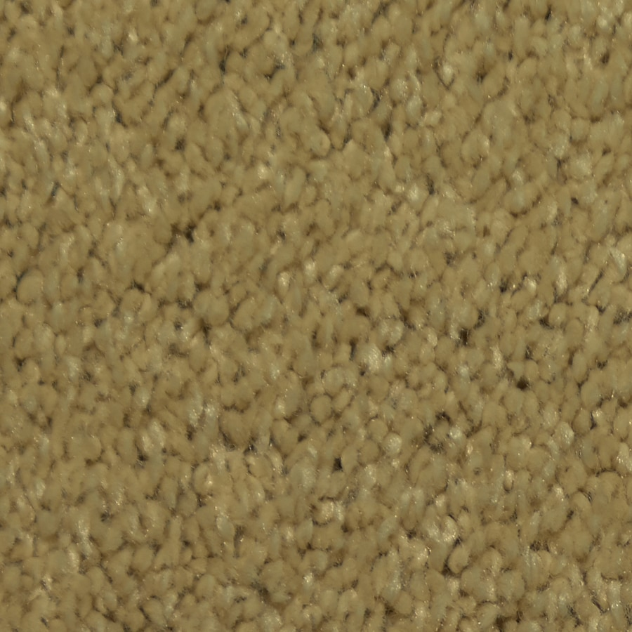 Dixie Group TruSoft Larissa 12-ft W x Cut-to-Length North Sea Textured Interior Carpet