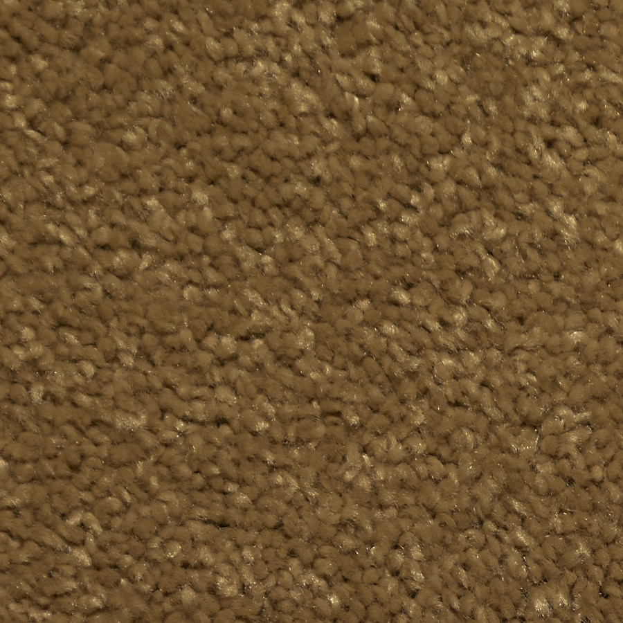 Dixie Group TruSoft Larissa 12-ft W x Cut-to-Length Milano Textured Interior Carpet