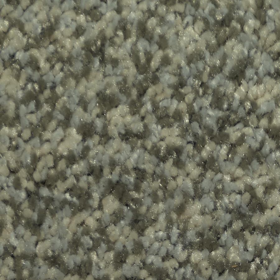 Dixie Group TruSoft Larissa 12-ft W x Cut-to-Length Carefree Textured Interior Carpet