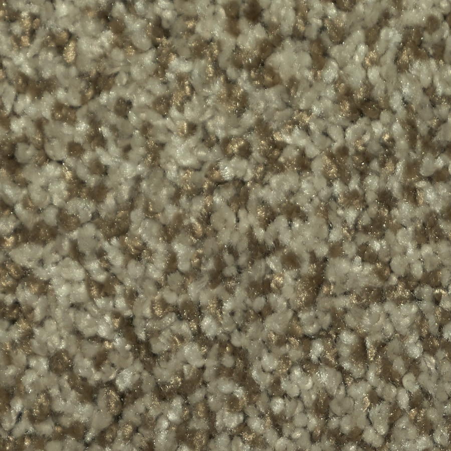 Dixie Group TruSoft Larissa Neptune Textured Indoor Carpet