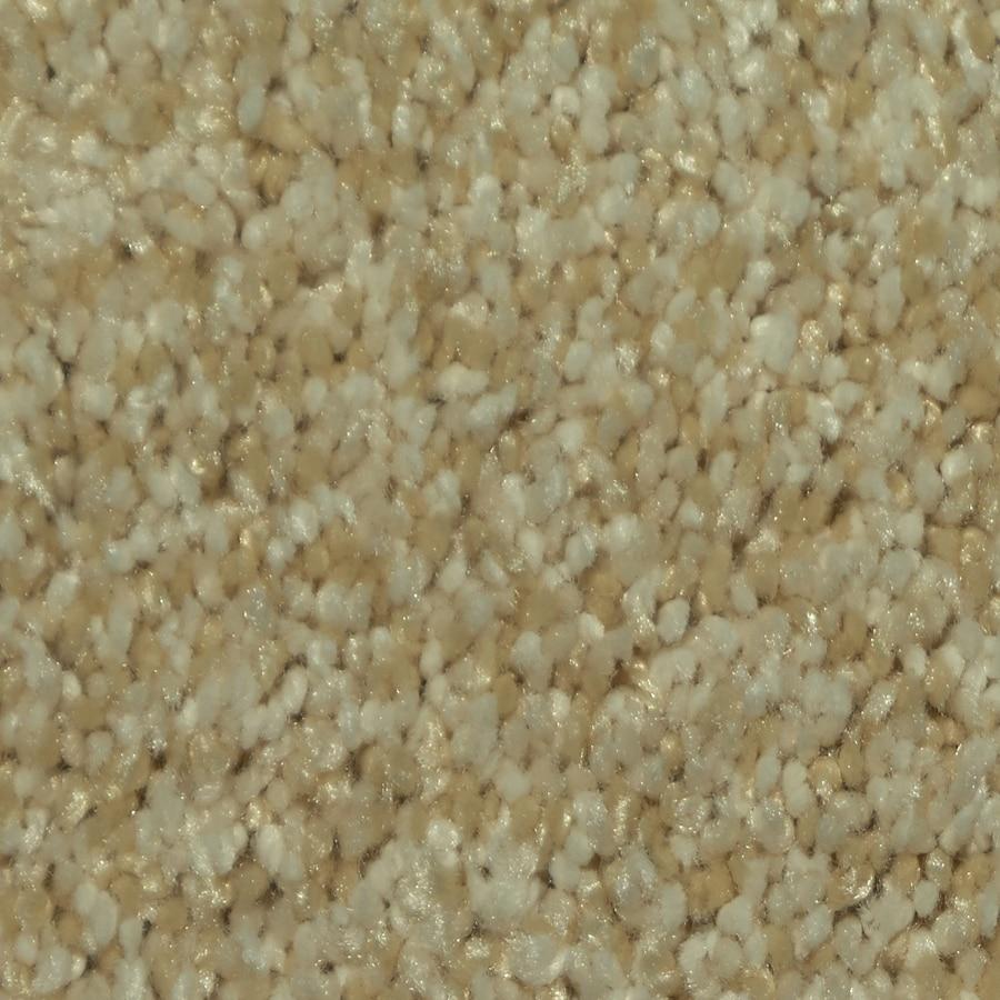 Dixie Group TruSoft Larissa Ballada Textured Interior Carpet
