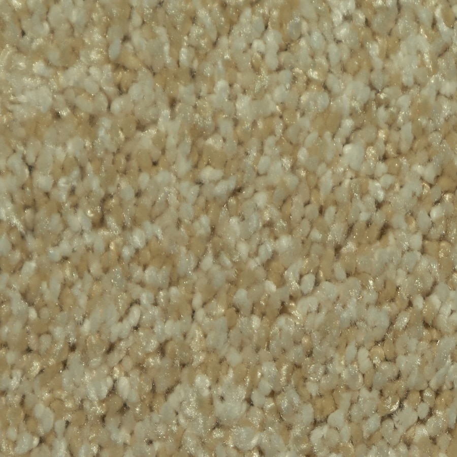 Dixie Group TruSoft Larissa 12-ft W x Cut-to-Length Ballada Textured Interior Carpet
