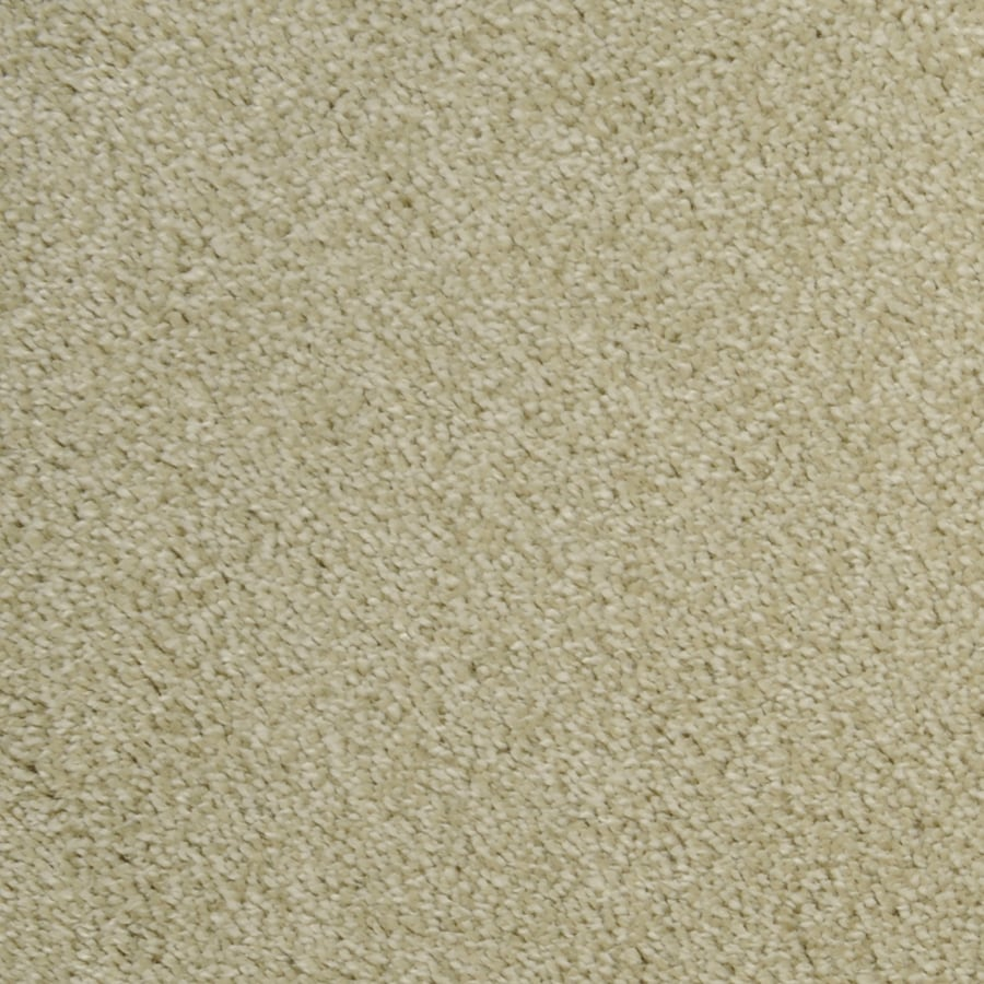STAINMASTER Bunker Hill Rectangular Indoor Tufted Area Rug (Common: 4 x 6; Actual: 4-ft W x 6-ft L)