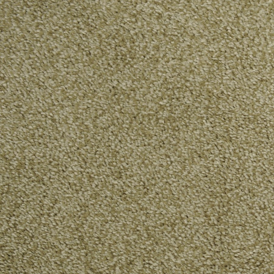 STAINMASTER Wild Rice Rectangular Indoor Tufted Area Rug (Common: 4 x 6; Actual: 48-in W x 72-in L)