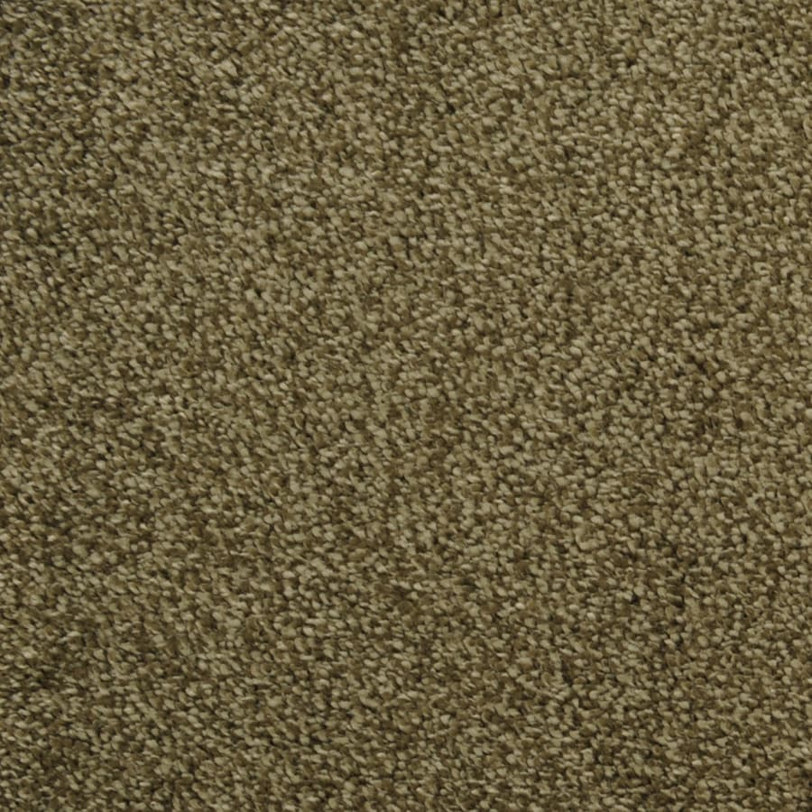 STAINMASTER Ultra Soft Rectangular Indoor Tufted Area Rug (Common: 6 x 9; Actual: 72-ft W x 108-ft L)